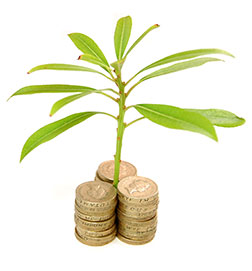 Are you looking for additional funds to support and grow your business?